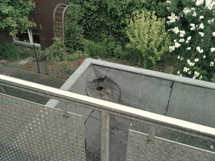wie bekomme ich diesen balkon katzensicher katzen forum. Black Bedroom Furniture Sets. Home Design Ideas
